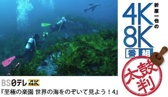 """""""こじるり""""がナビゲート!<br>ダイビング体験が味わえる4K番組"""